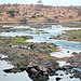 The majestic Ruaha River