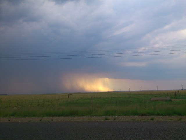 Thunderstorm brewing over Free State crop fields